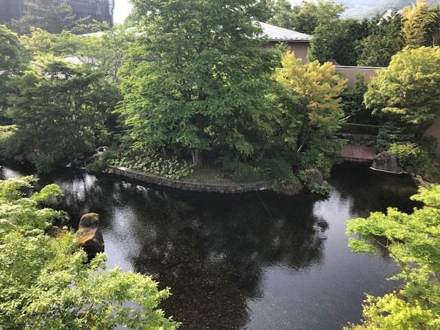 箱根翡翠の中庭の池